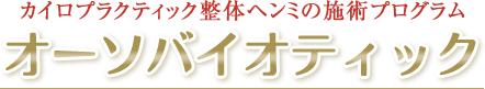 大阪市福島区カイロプラクティック整体ヘンミの施術プログラム オーソバイオティック