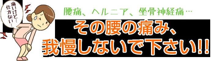 腰痛、ヘルニア、坐骨神経痛、その痛み我慢しないで大阪市福島区 カイロプラクティック整体ヘンミにお任せください!